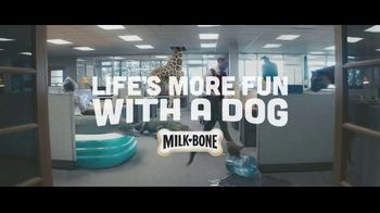 Milk-Bone TV Spot, 'Bring Your Pet to Work' - Thumbnail 8