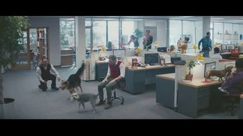Milk-Bone TV Spot, 'Bring Your Pet to Work' - Thumbnail 9
