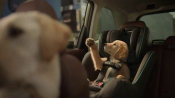 Subaru Forester TV Spot, 'Dog Tested: Honk' [T2] - Thumbnail 5