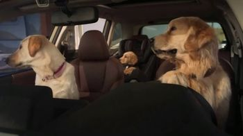 Subaru Forester TV Spot, 'Dog Tested: Honk' [T2]