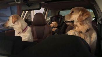 Subaru Forester TV Spot, 'Dog Tested: Honk' [T2] - Thumbnail 6