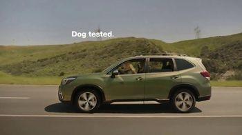 Subaru Forester TV Spot, 'Dog Tested: Honk' [T2] - Thumbnail 9