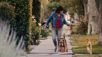 Starbucks Veranda Blend TV Spot, 'A Great Day in the Making: Dog Walker'