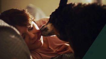 Starbucks Veranda Blend TV Spot, 'A Great Day in the Making: Dog Walker' - Thumbnail 2