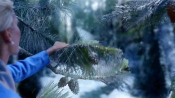 Glade Icy Evergreen Forest TV Spot, 'Frozen 2: susurro' [Spanish] - Thumbnail 5
