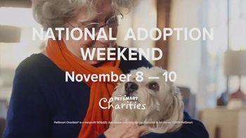 PetSmart National Adoption Weekend TV Spot, 'Companion' - Thumbnail 3