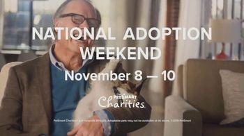 PetSmart National Adoption Weekend TV Spot, 'Companion' - Thumbnail 4
