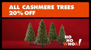 Big Lots TV Spot, '20 Percent off Cashmere Trees'