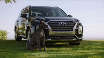 Hyundai TV Spot, \'Venue: 2020 Family of SUVs\' [T1]