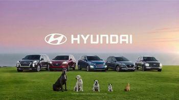 Hyundai TV Spot, 'Venue: 2020 Family of SUVs' [T1] - Thumbnail 6