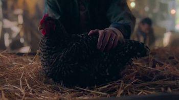 Peacock TV TV Spot, 'Peacock Hatching' - Thumbnail 2