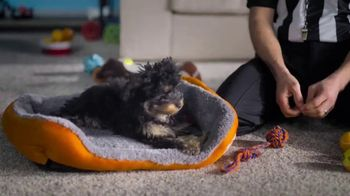 The Home Depot TV Spot, 'Rescue Puppy' - Thumbnail 4