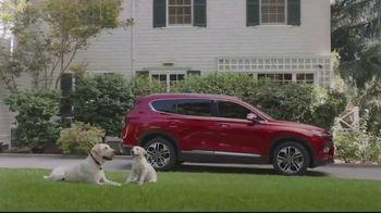 Santa Fe: 2020 Family of SUVs [T1] thumbnail