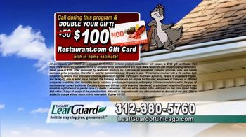 LeafGuard of Chicago 99 Cent Install Sale TV Spot, 'Cold Water' - Thumbnail 8