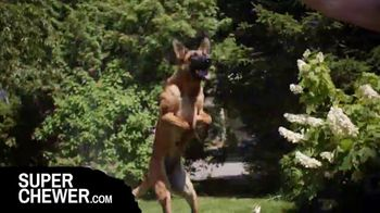 Super Chewer TV Spot, 'Really Love to Play: Free Shipping' - Thumbnail 4