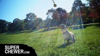 Super Chewer TV Spot, 'Really Love to Play: Free Shipping' - Thumbnail 5