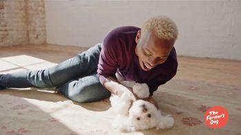 The Farmer's Dog TV Spot, 'Performing Artist: 50 Percent Off First Box' - Thumbnail 4