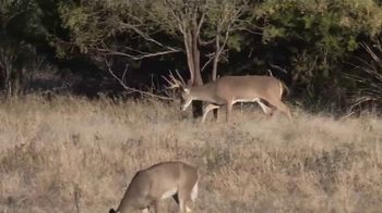 Tecomate Properties TV Spot, 'Rock Head Ranch'
