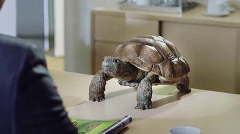 Wonderful Pistachios TV Spot, 'Why Now?'