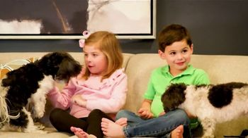 Ethan Allen January Sale TV Spot, 'Active Family Life'
