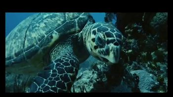 Atlantis TV Spot, 'Welcome: 35 Percent' Song by Grace Mesa - Thumbnail 1
