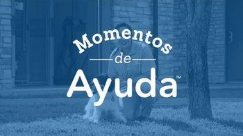 2019 Honda CR-V TV Spot, 'Ayuda para cachorritos' [Spanish] [T2] - Thumbnail 1