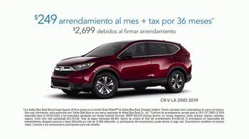 2019 Honda CR-V TV Spot, 'Ayuda para cachorritos' [Spanish] [T2] - Thumbnail 5