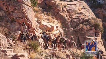 Grand Canyon Conservancy TV Spot, 'Preserve and Protect' - Thumbnail 9