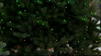 Hallmark Channel: Vermont White Spruce With Light Show Technology thumbnail