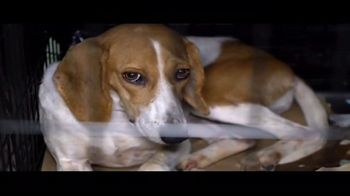 ASPCA TV Spot, 'The Next Minute' - Thumbnail 2