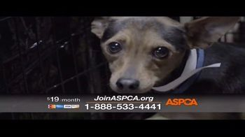 ASPCA TV Spot, 'The Next Minute' - Thumbnail 6