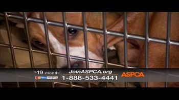 ASPCA TV Spot, 'The Next Minute' - Thumbnail 7
