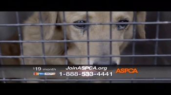 ASPCA TV Spot, 'The Next Minute' - Thumbnail 8
