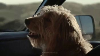 2020 Nissan Titan TV Spot, 'The Return' Song by Barns Courtney [T1] - Thumbnail 3