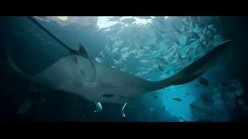 Atlantis TV Spot, 'Welcome: Fifth Night Free' Song by Grace Mesa - Thumbnail 6