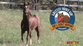 Grizzly Pet Products Joint Aid TV Spot, 'Therapeutic for Horses' - Thumbnail 1