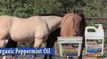 Grizzly Pet Products Joint Aid TV Spot, 'Therapeutic for Horses' - Thumbnail 6
