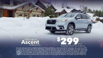 Subaru Washington's Birthday Sales Event TV Spot, 'Feel the Freedom: Ascent' [T2] - Thumbnail 6