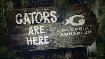 Georgia Aquarium TV Spot, 'Gator Crossing' - Thumbnail 6