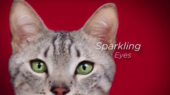 Purina ONE TV Spot, '28 Days. ONE Visibly Healthy Pet' - Thumbnail 4