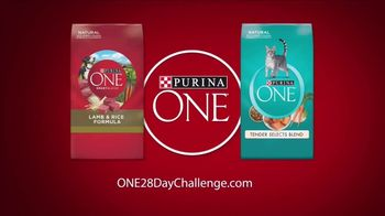Purina ONE TV Spot, '28 Days. ONE Visibly Healthy Pet' - Thumbnail 5