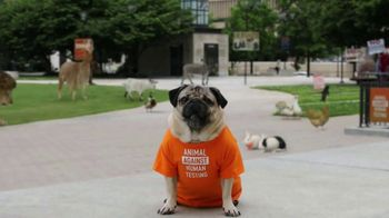 Truth TV Spot, 'For Help Quitting Vaping' Featuring Doug The Pug - 1245 commercial airings