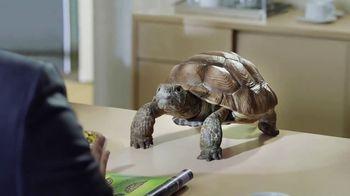 Wonderful Pistachios TV Spot, 'I Speak Turtle' - Thumbnail 1