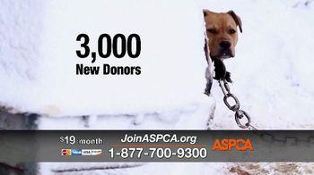 ASPCA TV Spot, 'Season of Giving: Last Chance' Song by Susan Boyle - Thumbnail 5