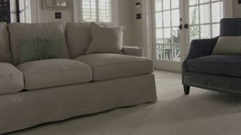 Stanley Steemer Carpet Cleaning Special Tv Commercial