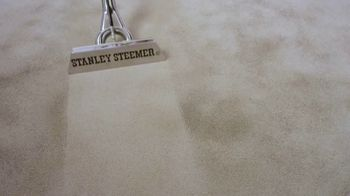 Stanley Steemer TV Spot, 'New Cleaning Process With Disinfectant' - Thumbnail 8