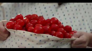 Miracle-Gro Performance Organics TV Spot, 'Finally, Organics That Work' - Thumbnail 5