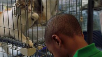 Clear the Shelters TV Spot, 'NBC: Resources' - Thumbnail 6