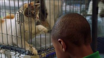 Clear the Shelters TV Spot, 'NBC: Resources' - Thumbnail 7