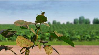 Syngenta Miravis Neo TV Spot, 'Sneaky Soybeans'